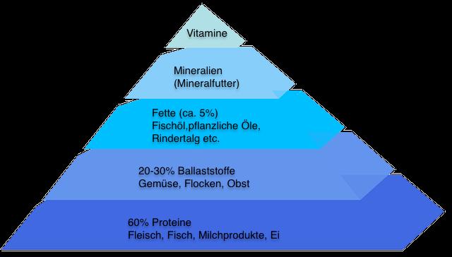 Barf Futterplan Pyramide
